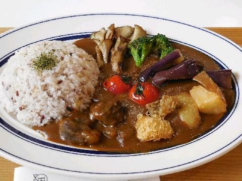 higoroccafe 熊本産食材の料理を提供 福岡市中央区